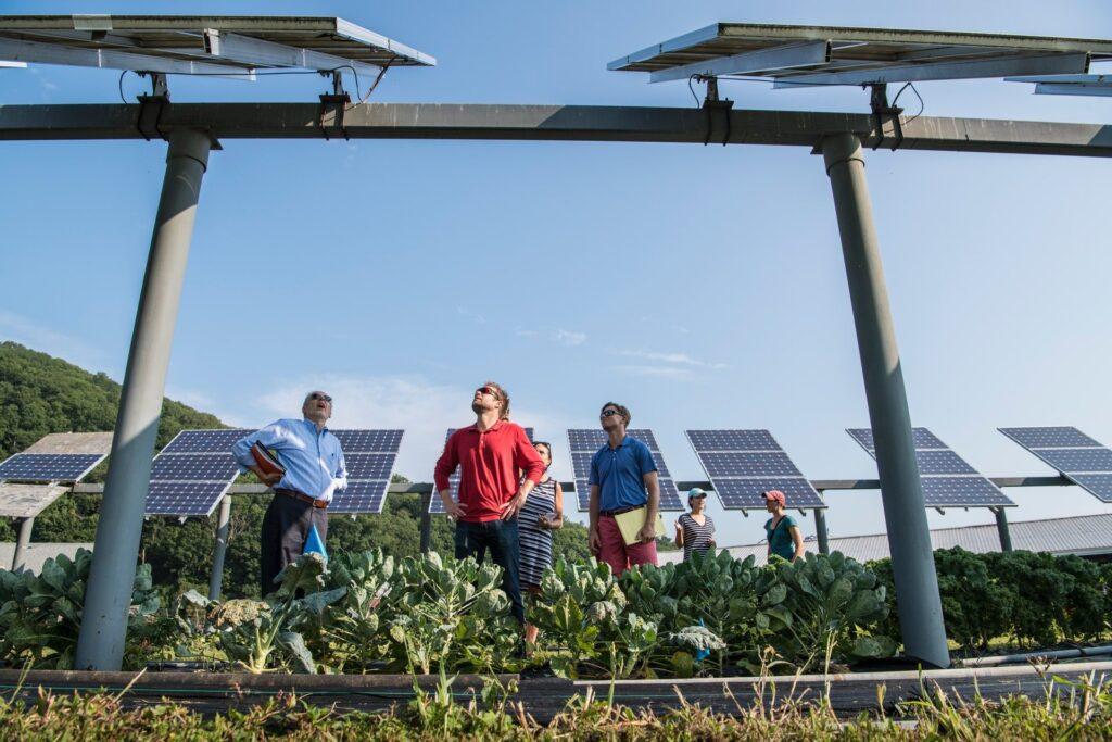 napelem rendszerek ár